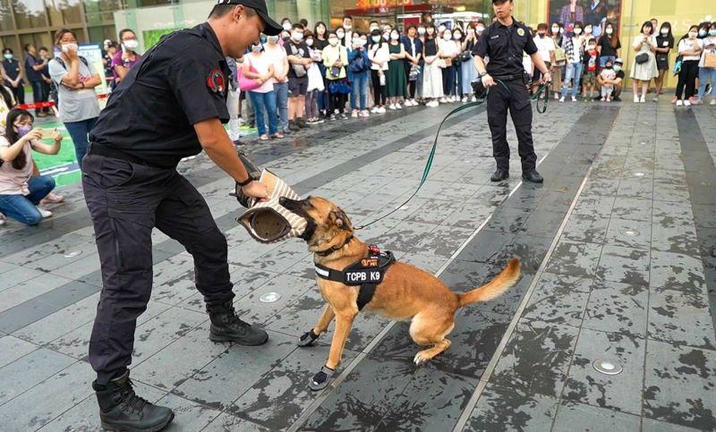 臺中大遠百慶祝「九三軍警一家」 警犬展示緝毒神技