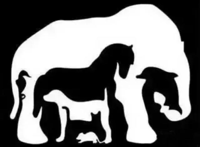 ▲第一眼看到什麼動物?測你的真實個性與隱藏天賦。(圖/翻攝自《蓋婭星球》)