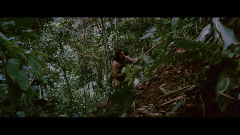 電影全劇組中「瘧疾」 勞勃狄尼洛快瘋了