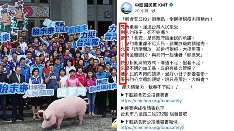 國民黨反美豬啟食安<b>公投</b> 借「藏頭詩」籲連署暗酸丁允恭