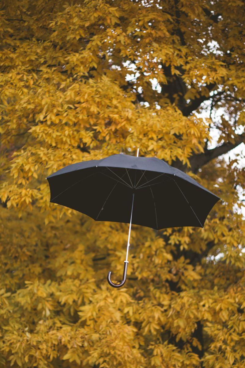 ▲雨傘。(示意圖,與文章中內容無關/取自unsplash)