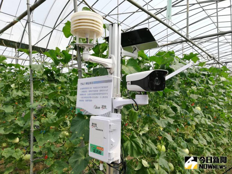 ▲空氣土壞監測站設於溫室裡,為瓜果監控調整最好的成長環境。(圖/記者邱嘉琪攝,2020.09.11)