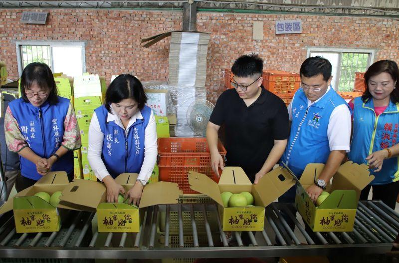 ▲ 台灣農用紙箱傳出缺貨潮。(示意圖/NOWnews資料照)