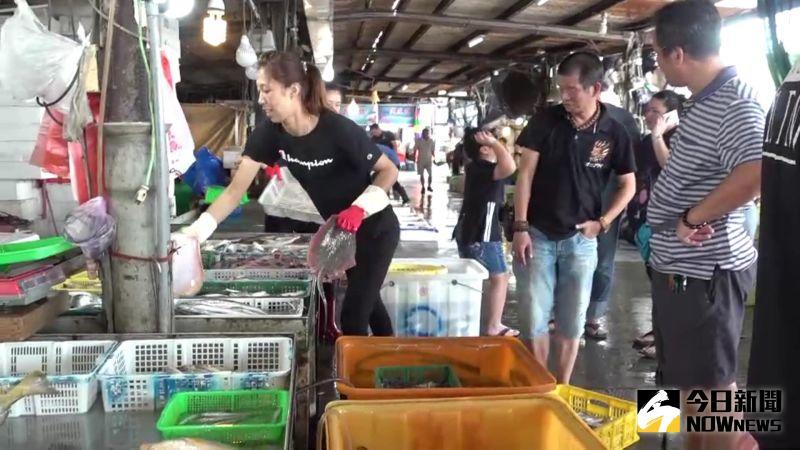 ▲每年從七月至十一月塭仔漁港總會湧進大批搶鮮的饕客。(圖/記者陳雅芳攝,2020.09.12)