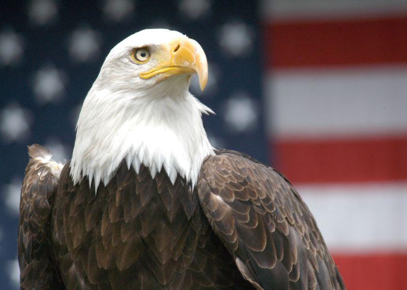 美駐中大使將離任 環時:繼任者可能是鷹派