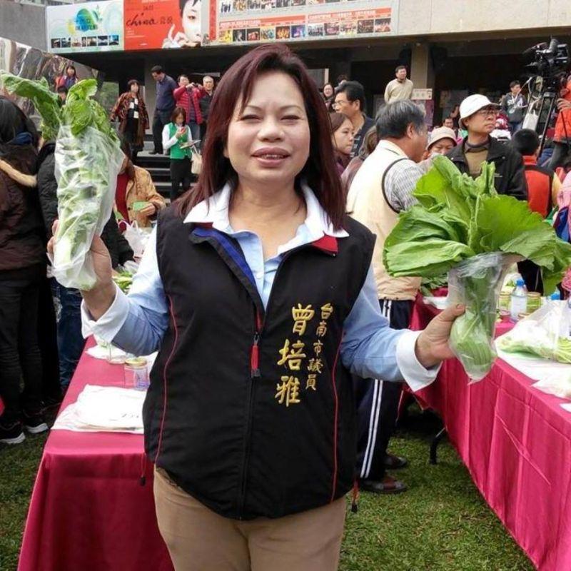 台南市議員曾培雅涉詐領助理費 20萬交保