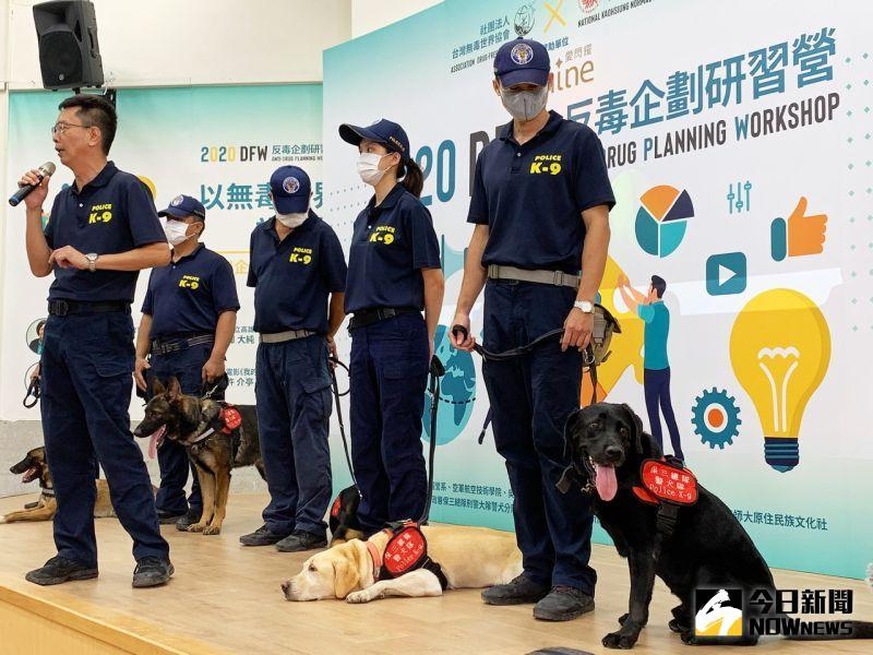 ▲ 「台灣無毒世界協會」不定期舉辦研習營,使更多人了解反毒是可以從你我開始做起的。(圖/記者陳美嘉攝,2020.09.19)