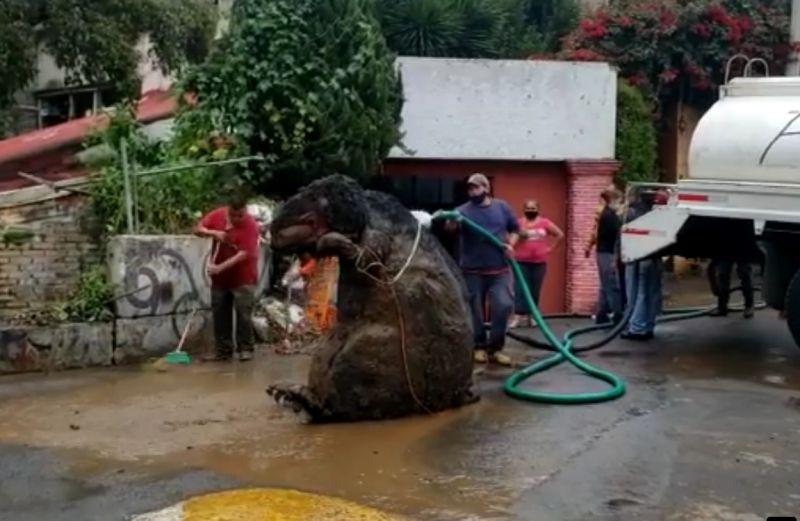 ▲清潔隊從下水道沖出的巨鼠,其實是「萬聖節道具」。(圖/翻攝自《Enrique