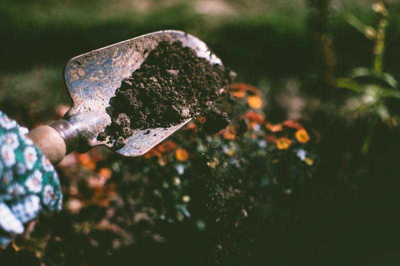 ▲美國一位82歲老翁才剛整理完花園沒多久,身體就出現昏睡症狀,更在9天後就離世,經驗屍後揪出真相。(圖/翻攝Pexels)