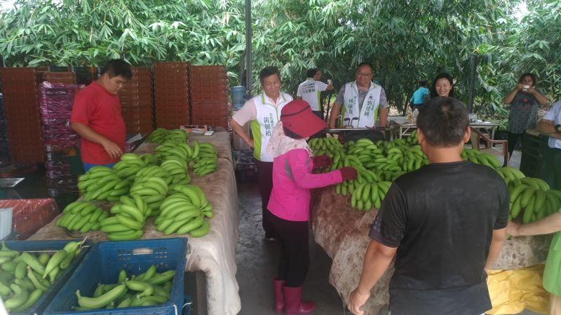 助蕉農 劉建國協助雲林香蕉企業<b>採購</b>