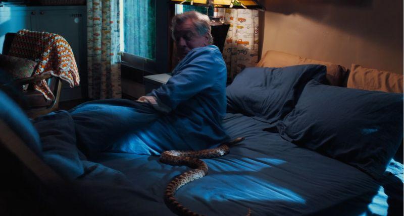 ▲勞勃狄尼洛被惡整,真蛇上陣。(圖/甲上)