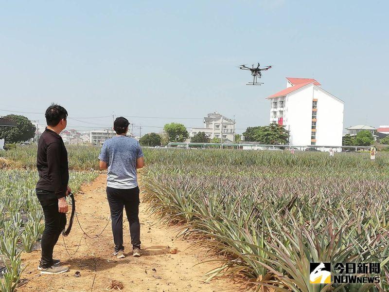 無人機監測鳳梨田 拍攝一分地只要10分鐘