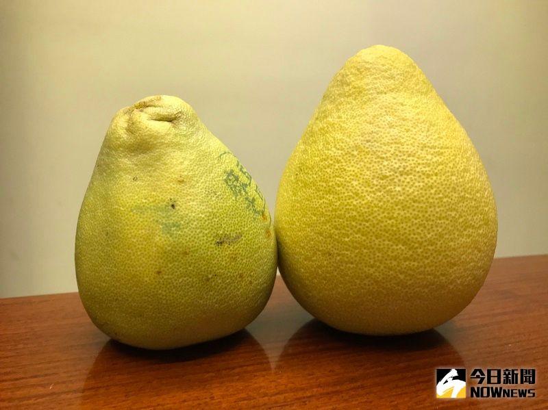 ▲一年一度的中秋節即將到來,大家除了吃月餅、鳳梨酥外,也會應景買些柚子來吃。(圖/記者康子仁攝)