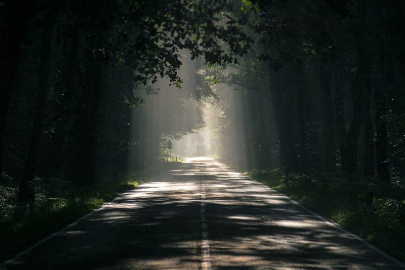 ▲資深媒體人馬西屏分享「第一陰屍路」,就是位於陽明山上的「巴拉卡公路」。(示意圖,與文章中內容無關/取自 pixabay )