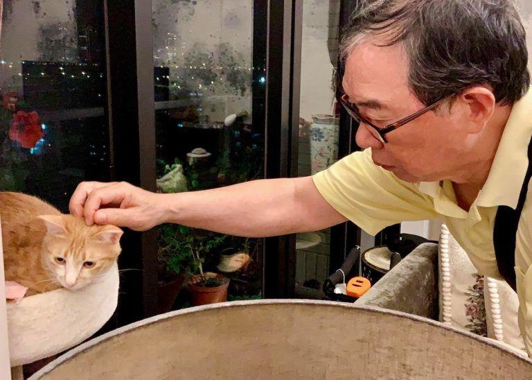 ▲傲嬌爸嘴硬卻會偷摸Uni(圖/FB@傲嬌爸的養貓日常)