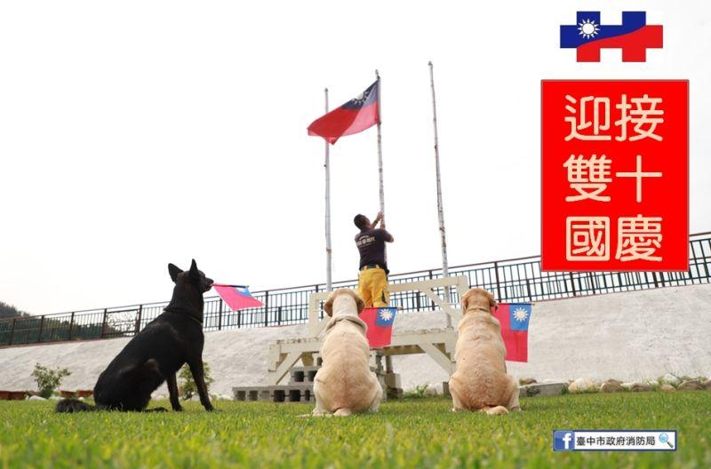 全國最療癒國慶升旗!台中<b>搜救犬</b>祝國家生日