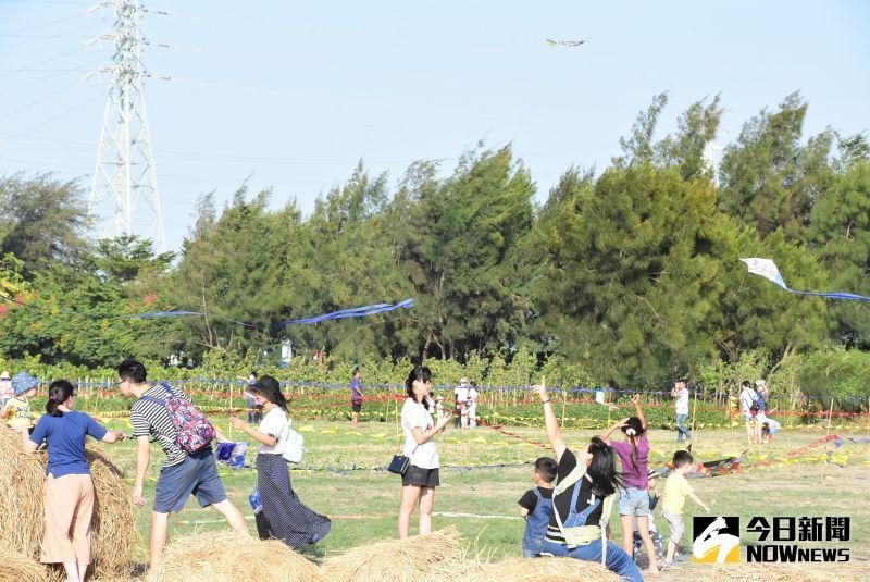 ▲二林鎮公所首次舉辦大型風箏節活動,風箏達人也帶來難得一見的造型風箏、競技風箏,20多種花樣令人目不暇給,現場驚呼聲不斷。(圖/記者陳雅芳攝,2020.10.11)