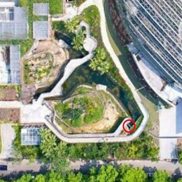 ▲小食蟻獸戶外活動區空照圖,紅圈部份為小紅攜子逃脫的地方(圖/Taipei