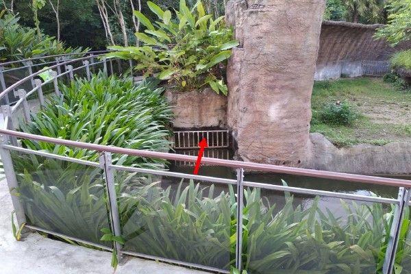 ▲園方研判小紅與紅豆逃脫的位置(圖/Taipei
