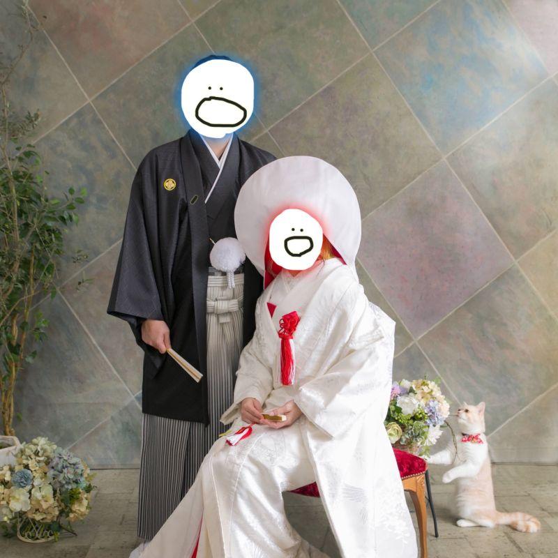 ▲推主翻出一年前拍的婚紗照,看到好奇貓可愛行為覺得回憶滿滿!(圖/Twitter@OKAKI_205)