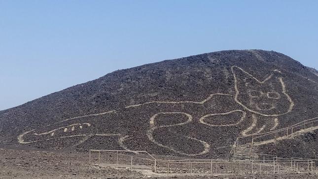 祕魯沙漠「千年貓貓」現蹤!巨型圖騰曝 網笑翻:誰畫的