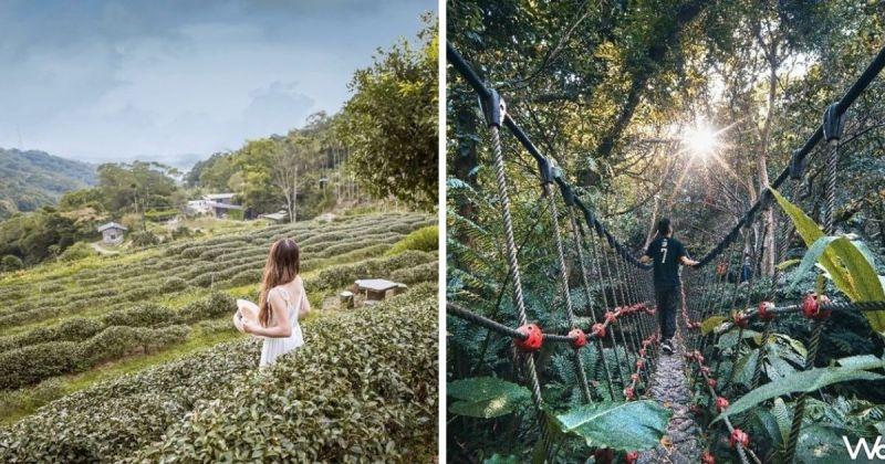 拼圖,貓空水土保持園區(左)、壺穴吊橋(圖|台北市政府/Taipei Walker)