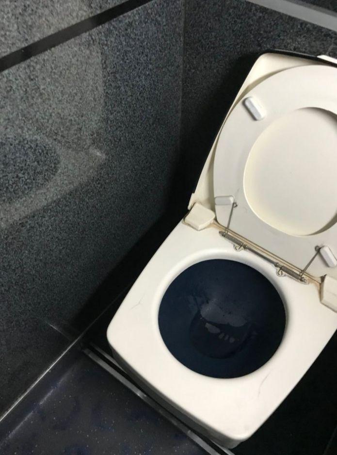 ▲網友表示,這馬桶設計完全撿不到也看不到。(圖/翻攝自《Dcard》