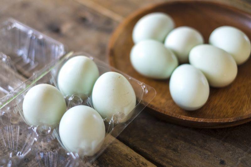 打蛋見三顆蛋黃!男愣「還1大2小」 內行揭真相:要發了