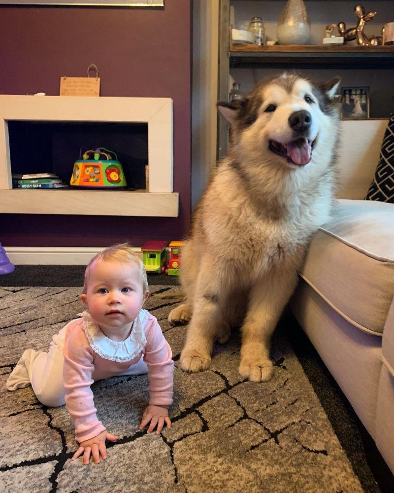 ▲是寶寶的最佳夥伴!(圖/Facebook@Life