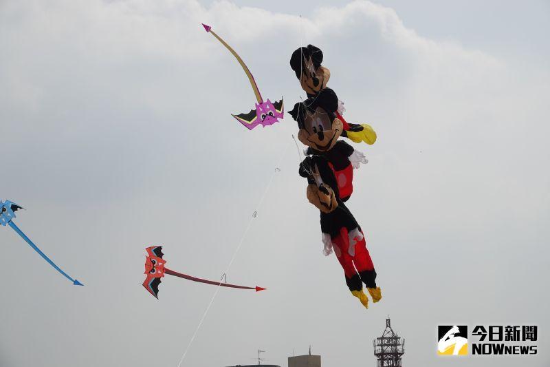▲來自各地的風箏好手,特別帶來逾30米長的章魚、鯨魚、海豚、螃蟹…等大型軟體風箏,在空中展開一場熱鬧繽紛的海洋派對。(圖/記者陳雅芳攝,2020.11.01)