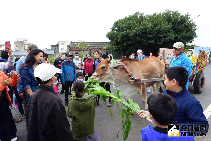 ▲海牛的稀少性,希望透過活動讓更多人來體驗,讓海牛能繼續繁殖下去。(圖/記者陳雅芳攝,2020.11.08)