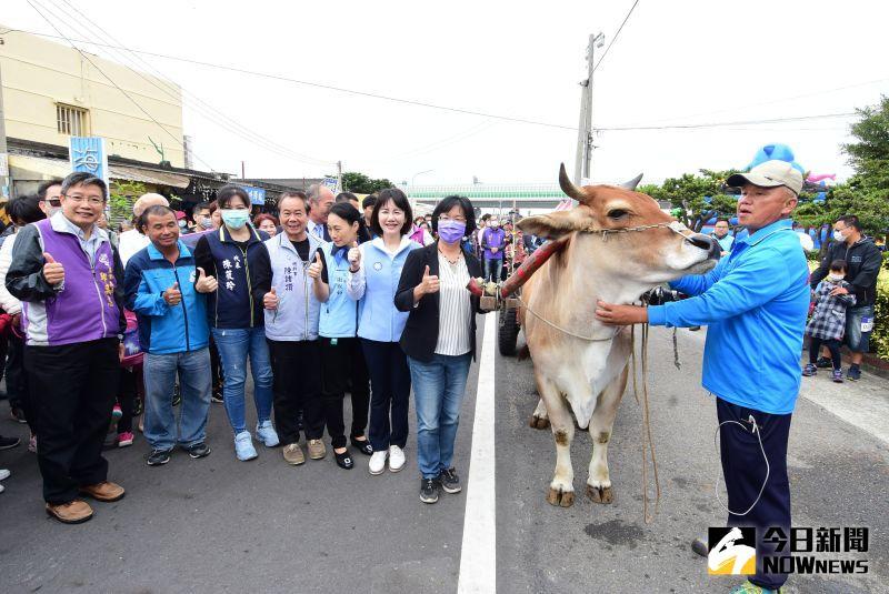 海牛文化節