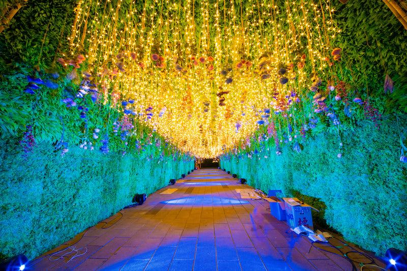 ▲「新北歡樂耶誕城」今年首度將範圍擴大至府中商圈,並規劃不同特色的主題燈區以及藝術裝置。(圖/新北市觀旅局提供)