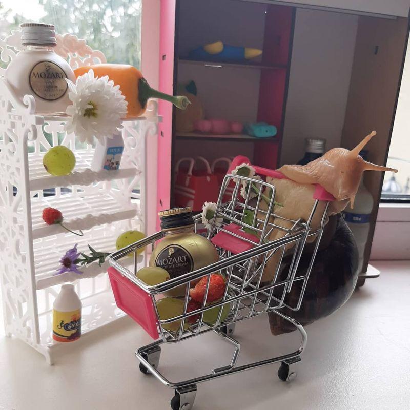 ▲購物節還不跟著本蝸一起Shopping!(圖/Instagram@fashion_baby_17_cm)