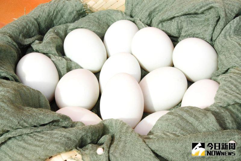▲全國每2顆蛋品就有1顆來自彰化。(圖/記者陳雅芳攝,2020.11.15)