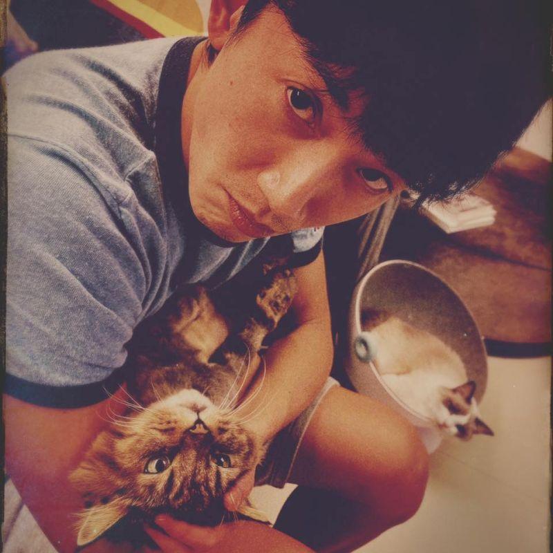 ▲吳慷仁更新臉書粉絲專頁的大頭貼,手抱著一隻虎斑貓。(圖/吳慷仁臉書)