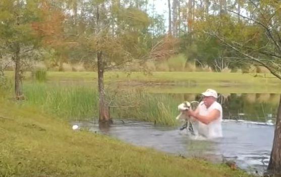 ▲在水中盲摸,找到鱷魚蹤影後立即將狗狗和鱷魚一起抓離水面(圖/Youtube@ABC7