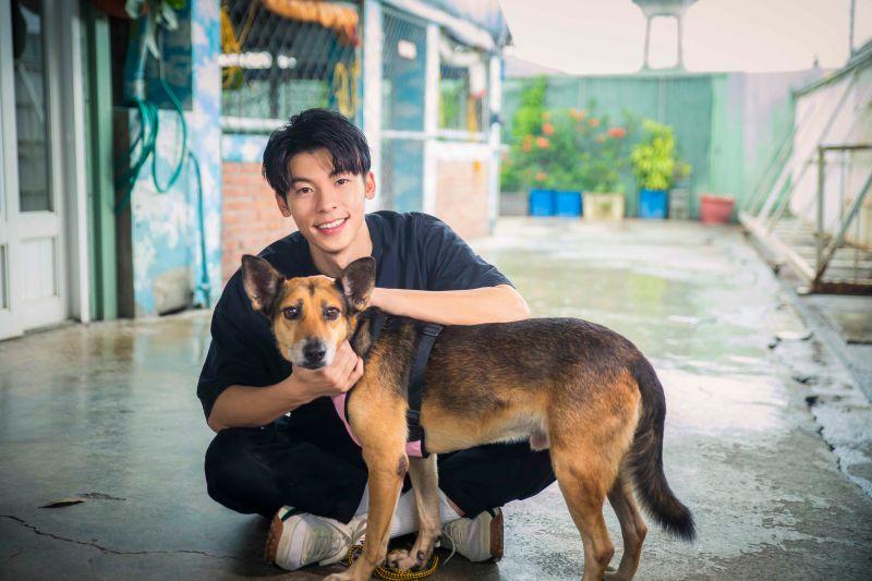 ▲許光漢看到狗狗們被虐待很心疼。(圖/愛最大慈善光協會)