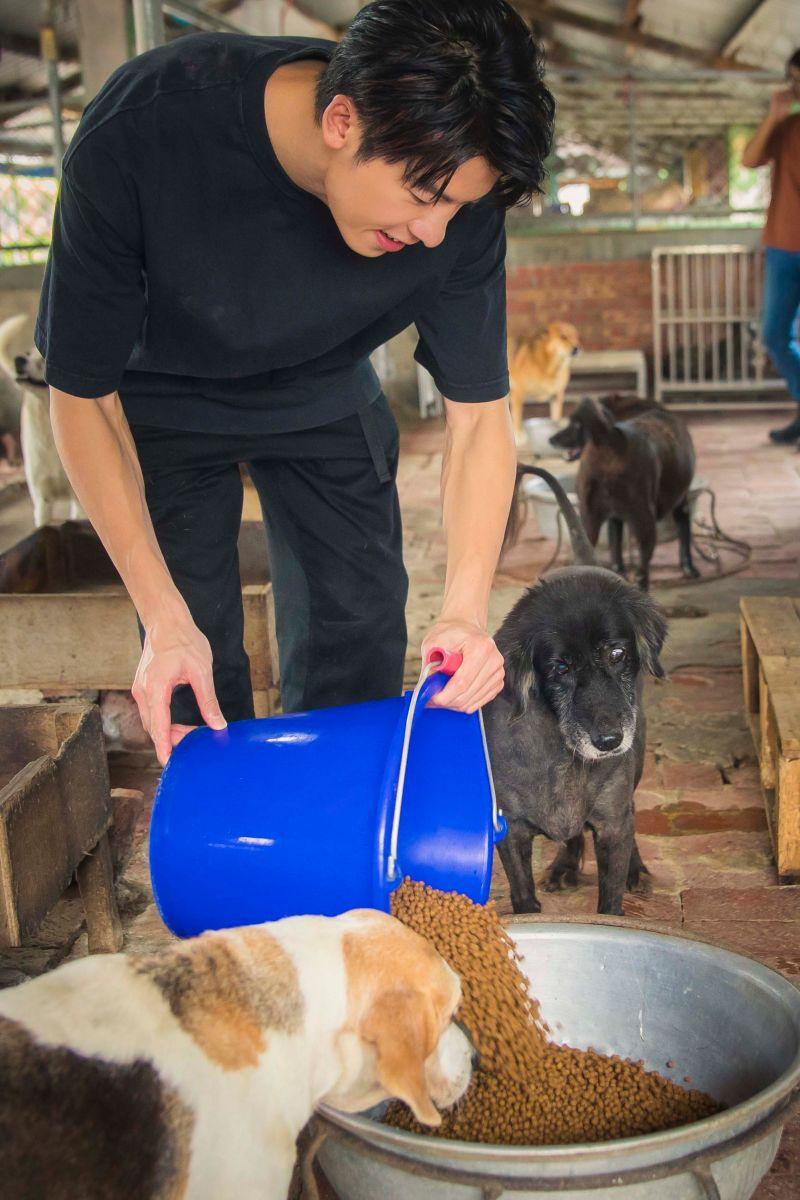 ▲▼許光漢幫狗狗洗澡、餵牠們吃飯,盡心照顧。(圖/愛最大慈善光協會)