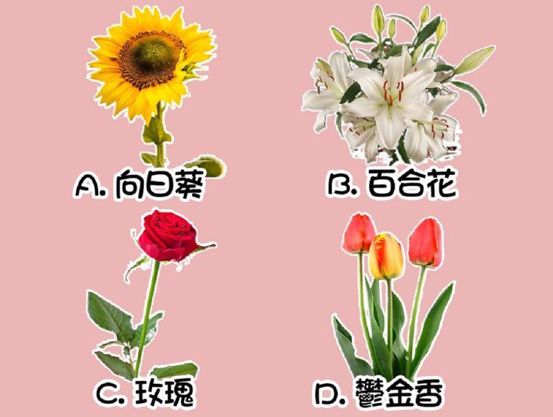 ▲選一種你最喜歡的花,測最近是否能「心想事成」?(圖/翻攝自《Look Pretty 美日誌》)