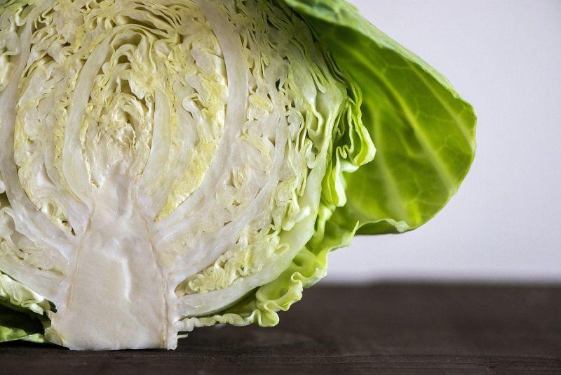 ▲高麗菜是許多人愛吃的蔬菜之一,烹飪簡單又能煮出蔬菜本身鮮甜口感。(示意圖/翻攝Pixabay)