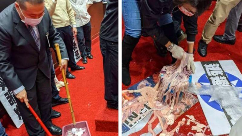 國會豬內臟齊飛!國民黨:已沒別的方法對抗蔡政府獨裁