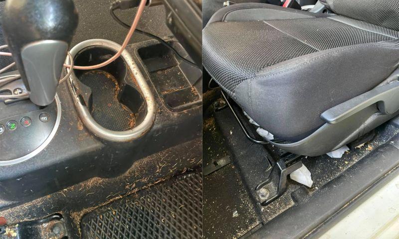 ▲一名洗車店老闆PO出正妹乘客的車子內部照。(圖/翻攝自《爆廢1公社》)