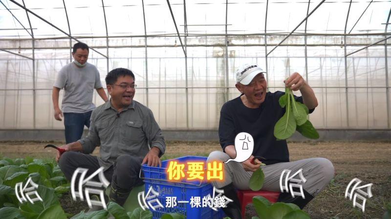 ▲特力集團總裁何湯雄近年來以個人名義投入健康生活事業,自今年8月開設個人影音頻道分享健康生活。圖為一日農夫體驗。(圖/擷取自youtube頻道:跟著Tony總裁健康go)