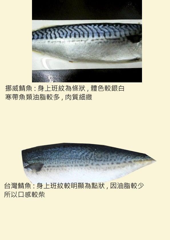 ▲網友分享挪威鯖魚與台灣鯖魚的差異。(圖/翻攝自《爆怨2公社》臉書社團)