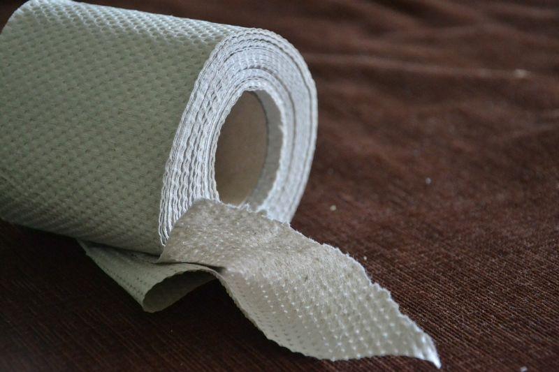 ▲瑪格麗特不小心掉落一張衛生紙而被2官員開罰。(示意圖/翻攝Pixabay)