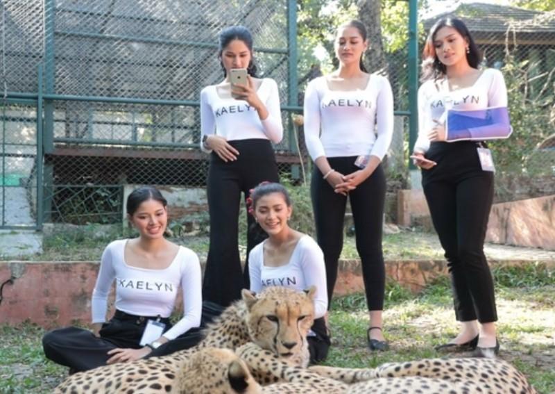 泰國選美佳麗與花豹貼身合影 粉絲驚呼:心臟超大顆!