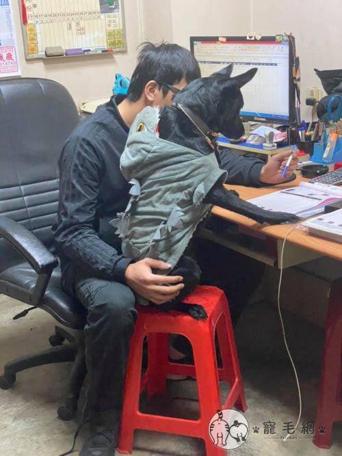 ▲罵丸老闆在檢視今天的進帳明細啦!(圖/Facebook@張景淵授權提供)
