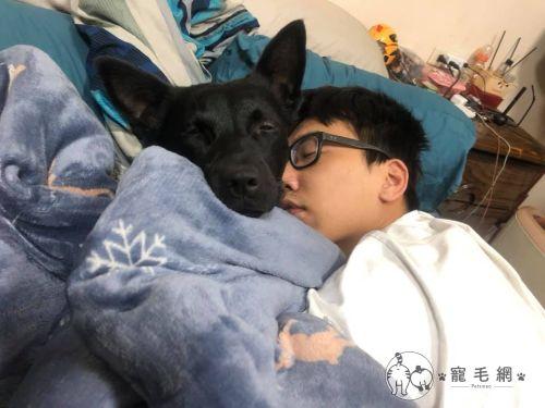 ▲冬天這樣睡實在太~舒服了!(圖/Facebook@張景淵授權提供)
