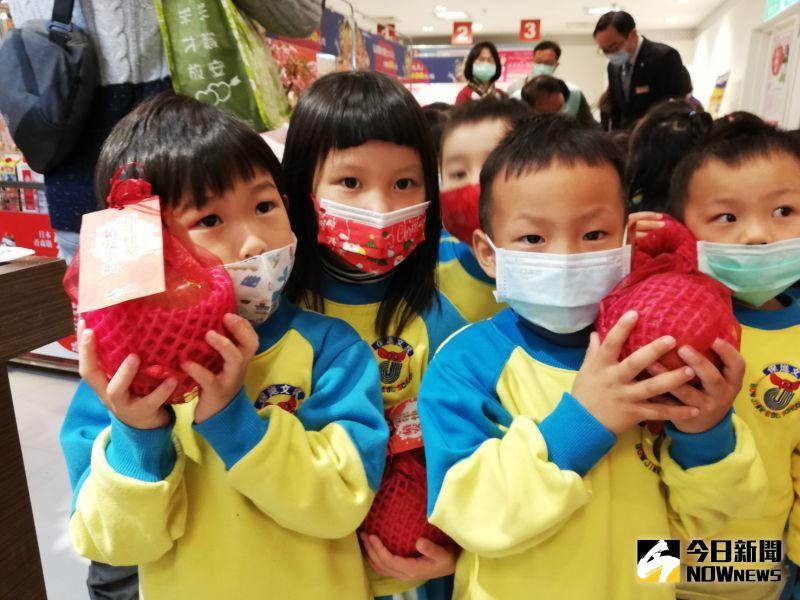 ▲弘前巿蘋果果型與幼兒的臉差不多大。(圖/記者邱嘉琪攝,2020.12.31)